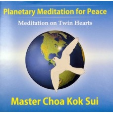 Twin Hearts Meditation for Peace & Illumination