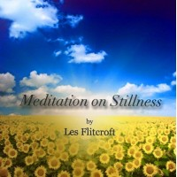 Meditation on Stillness by Les Flitcroft